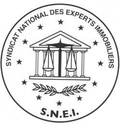 Logo SNEI_A